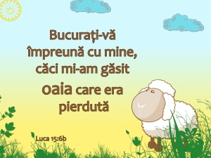 luca-15-cu-6b-copy