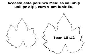 verset Ioan 15 cu12