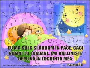 puzzlepsalmul4cu8c